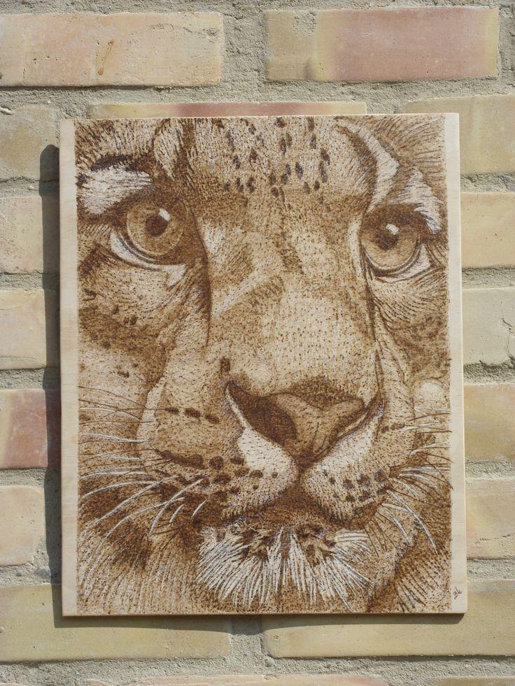 Gepard - kézzel égetett, pirográf kép (pyrography art)