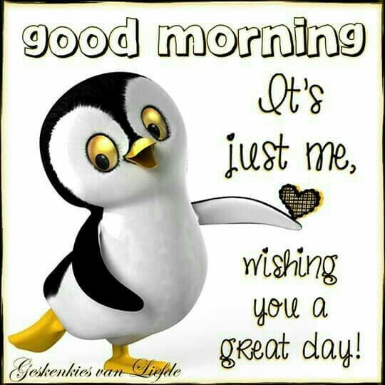 Good Morning Miss German : Images about good morning on pinterest beautiful