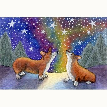 Corgis smiling at the heavens. Like they do.