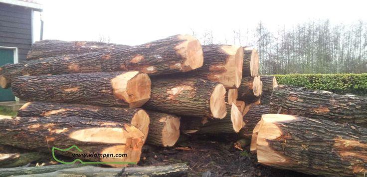 Wilgen bomen van voetbalveld Rilland 2013