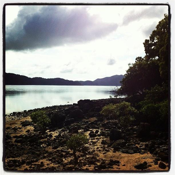 Passage to the incredible Whitsunday islands @hamiltonisland #return2paradise #seeaustralia. Sail away!