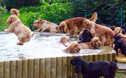 Cooling off!