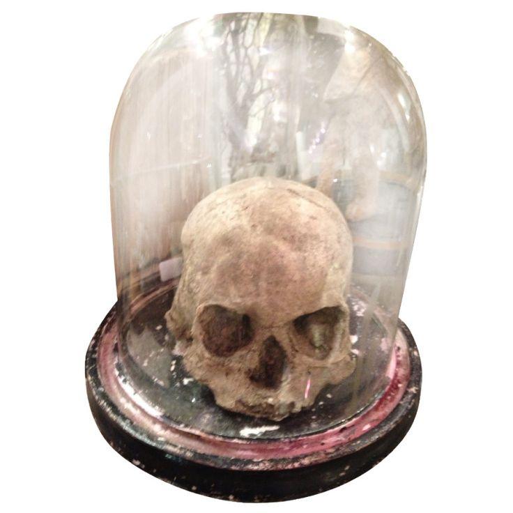 E g 19th c sculpture in paper mache the skull the for Papier mache art for sale
