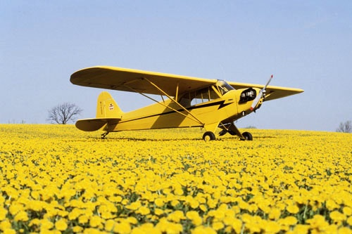 """""""The Piper Cub is the safest airplane in the world; it can just barely kill you."""" - Attributed to Max Stanley (Northrop test pilot)"""