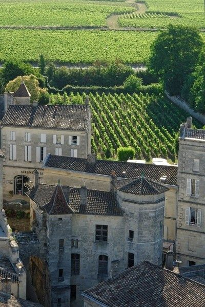 Saint-Emilion, vineyards and castle, Aquitaine