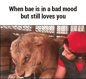 When bae angry