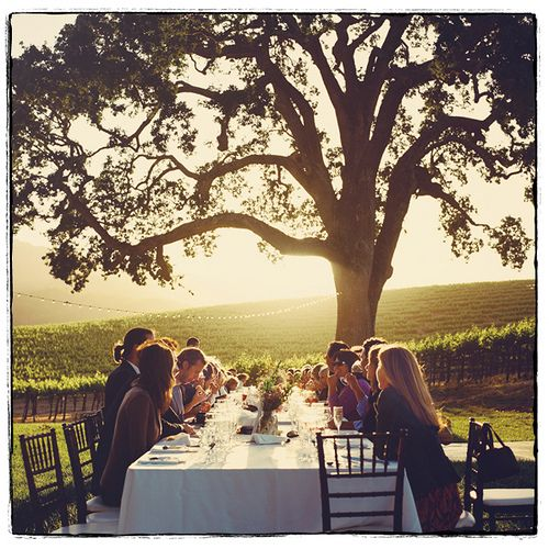 I'd love to be a part of this dining party. It feels very 'Jane Austen' / English country. A mood I dream about.