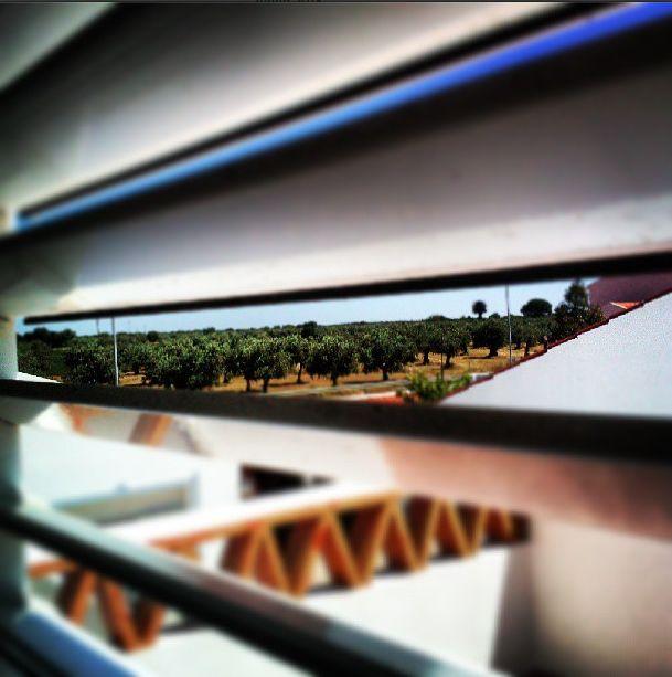 #goodmorning #window #horizon #landscape