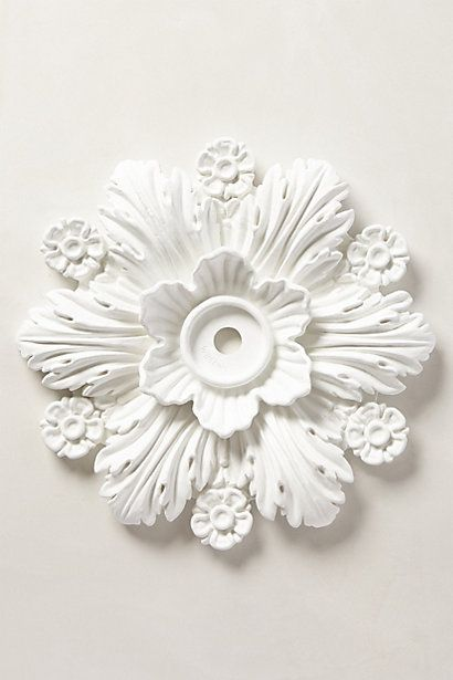foliate ceiling medallion from @Anthropologie