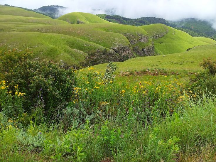 Long Tom Pass between Lydenburg Sabie in Mpumalanga - South Africa (Photo: Chantal Fourie)