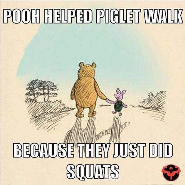 Poor helped piglet walk because they just did squats