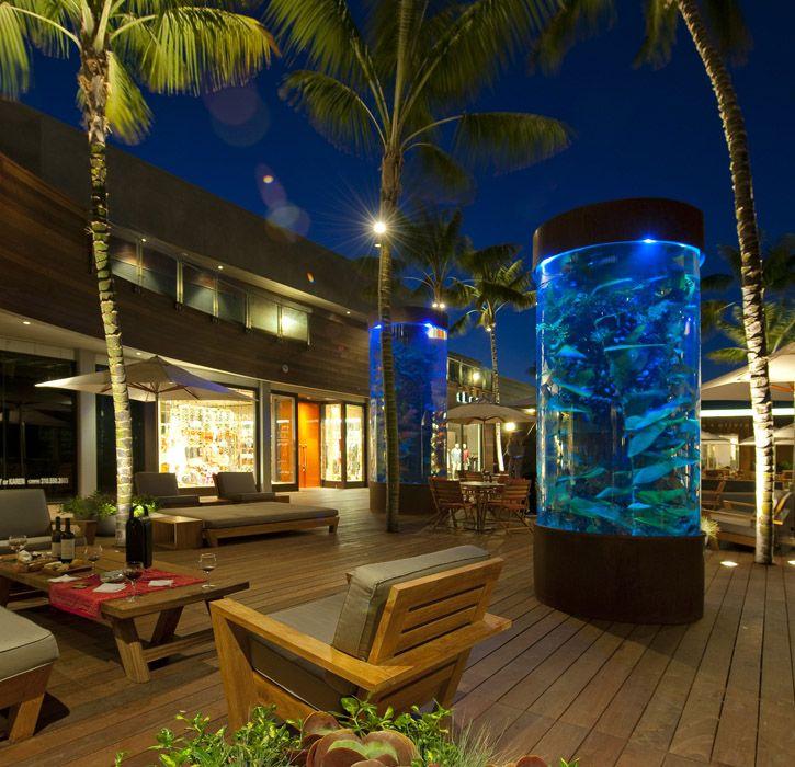 38 best images about outdoor fishtanks on pinterest for Outdoor fish aquarium