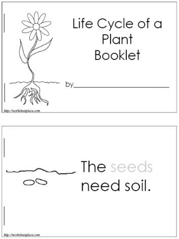 Life Cycle of a Plant Booklet (FREE) Can make it into a poster with the actual plants/soil/seeds glued onto it. The site also has many other printable worksheets!