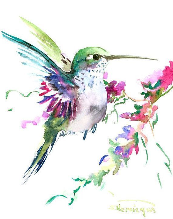 Pin Von Life Style Auf Water Color In 2019 Aquarell Kolibri