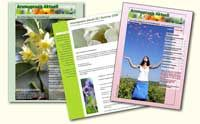 Du kannst dieses Aromatherapie-Journal auf Eliane Zimmermanns Homepage gratis herunterladen!
