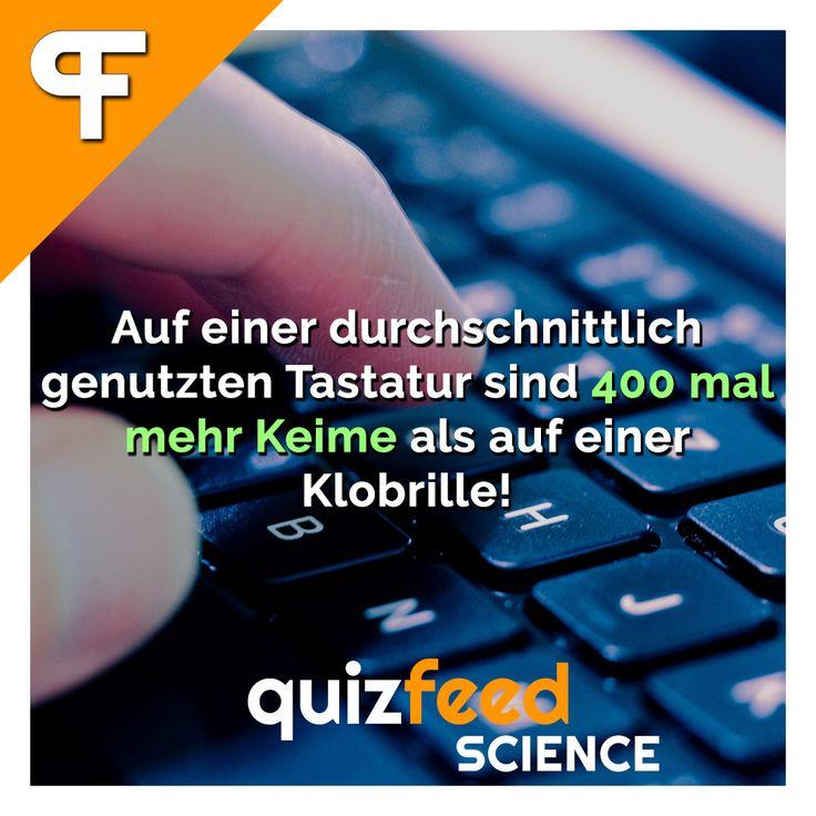 Auf einer durchschnittlich genutzten Tastatur sind 400 mal mehr Keime als auf einer Klobrille! Also am besten direkt zum Desinfektionsmittel greifen und die Tastatur reinigen.