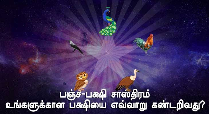 Panchapakshi Shastra Astrology Software Tamil Astrology Learn Astrology