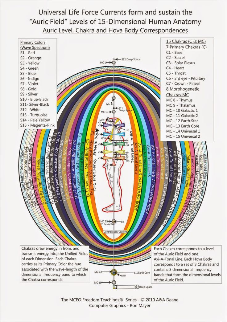 The Rainbow of Chakra Centers by Inner Light Resources