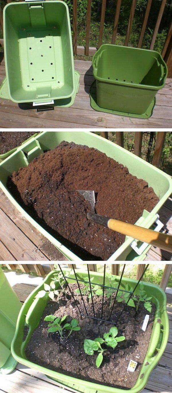 35+ Creative Garden Hacks & Tips That Every Gardener Should Know