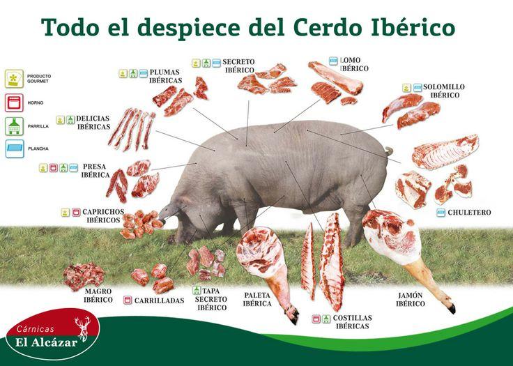 Despiece del cerdo ibérico.