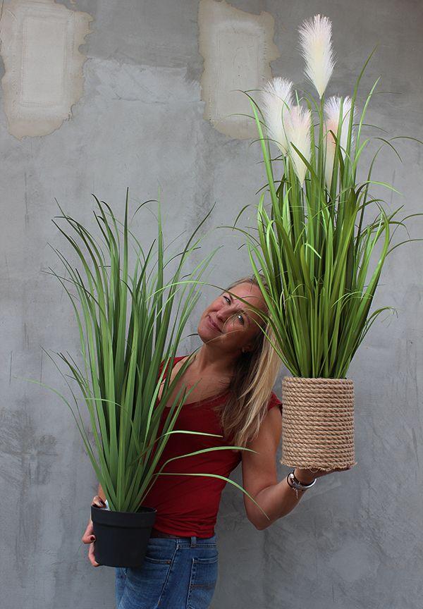 Sztuczne Trawy Z Pracowni Tendom Pl Plants Planters Planter Pots