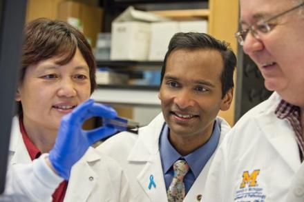 What drives advanced prostate cancer? New study describes genomic landscape