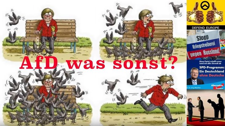 AfD Wahl 2017 CDU Einbruch ZDF Skandal Krieg der Medien Witz
