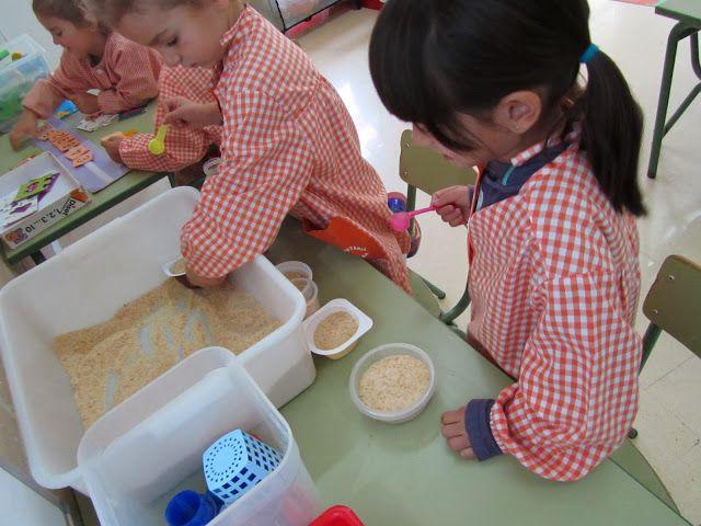 P4 RACONS Experimentem amb pa torrat Escola Lacustària