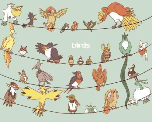 Pokemon - Birds (I don't think the birds from the sinnoh region are here..)