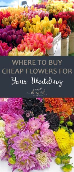 Best 25+ Inexpensive wedding flowers ideas on Pinterest ...