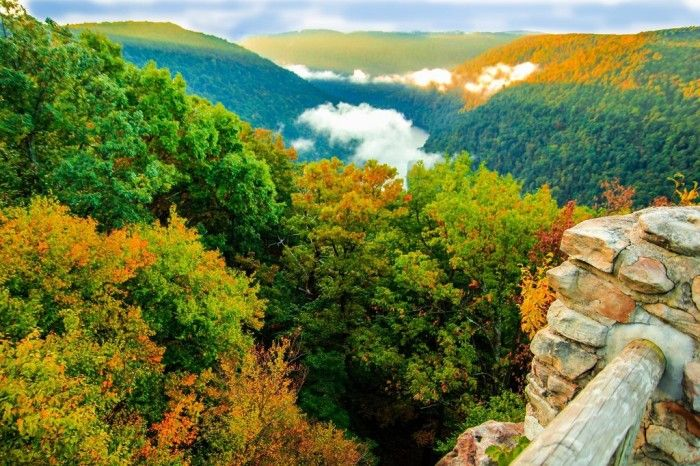 12. Any of the trails at Coopers Rock State Forest