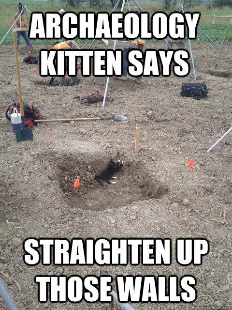 archaeology kitten says straighten up those walls