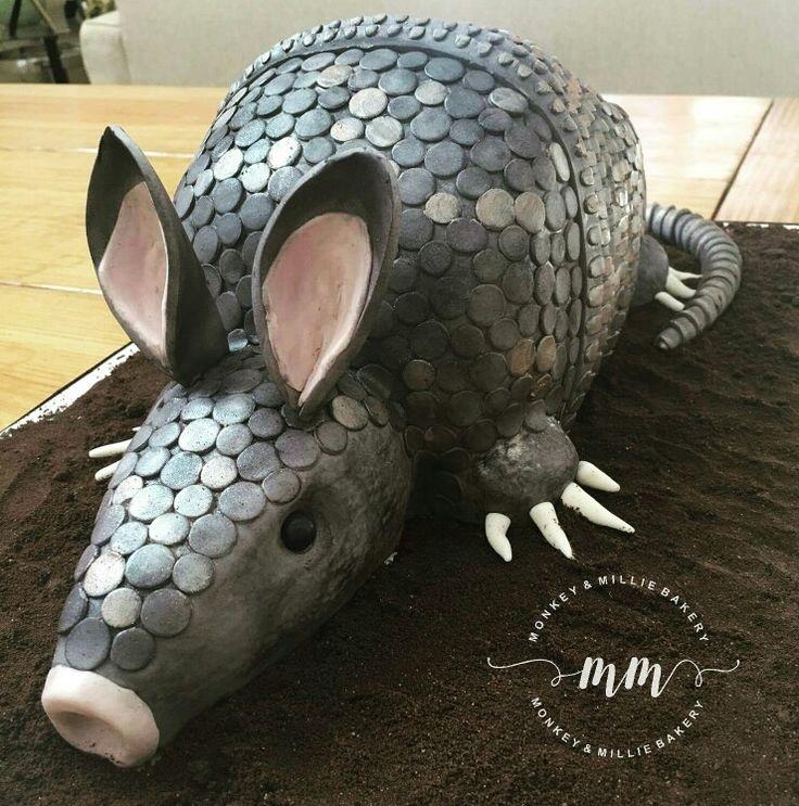 Armadillo cake via #Monkeyandmilliebakery