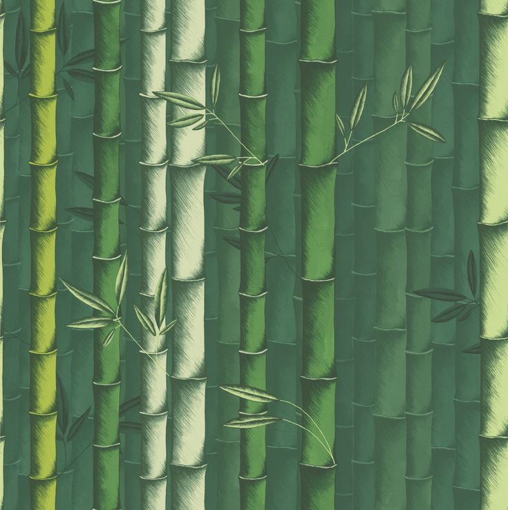 Osborne & Little Bamboo Emerald Wallpaper main image