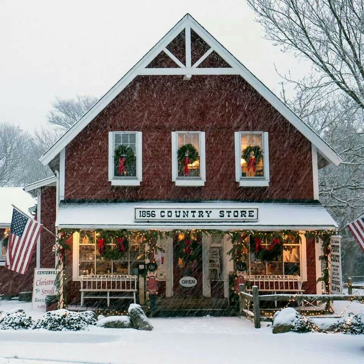 Country store at Christmas~