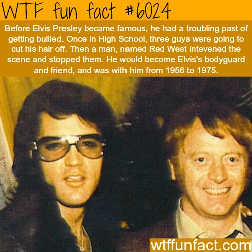 Elvis Presley's bodyguard - WTF fun facts