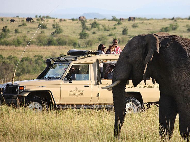 Sarova Mara Game Camp, Kenya - Condé Nast Traveler