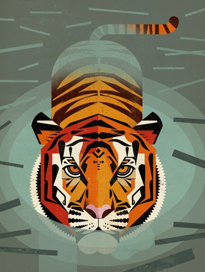 Swimming Tiger by Dieter Braun on myMzone for £25. Free Shipping