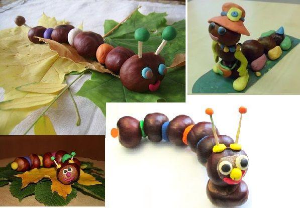 acorn animals - Google-søgning