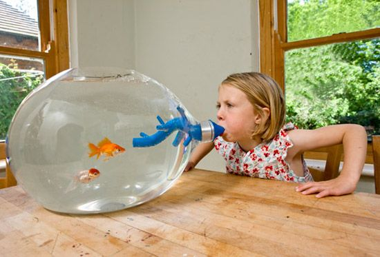 27 geekiest and weirdest fish tanks dvice humor