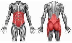 9 cenných cviků od fyzioterapeutů na bolesti zad