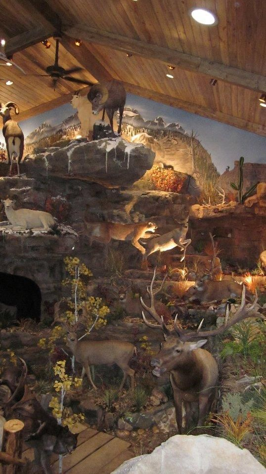 Trophy Rooms Texas, Murals Trophy Room design and Build Processes - Prairie Mountain Wildlife StudioDesigning & Building World Class Trophy Room