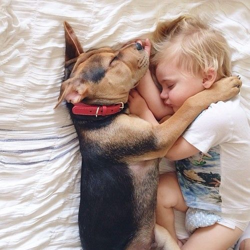Best Sleepy Cute Images On Pinterest - 30 adorable pictures babies puppies will melt heart