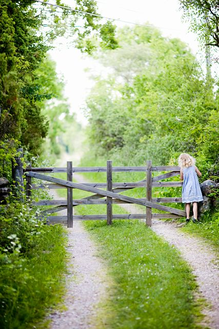 Looks exactly like the gate and lane that led to my grandparents farm. We'd stop the car and the youngest person riding in the car had to jump out and pull the gate open, let the car pass through and close it behind them so that the cows didn't get out.