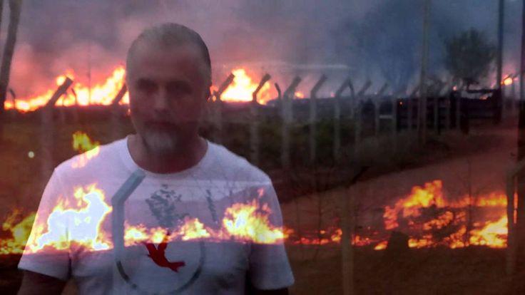 Da agosto 2012 a febbraio 2013, un'area di Amazzonia più grande della città di Londra è stata distrutta.  1.695 chilometri quadrati di foresta sono scomparsi (pari a 237.000 campi da calcio).  --- fonte: Greenpeace International