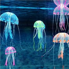 17 best images about glow fish fish tanks on pinterest | blue led, Reel Combo