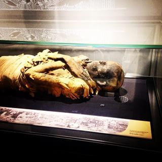 Or get up close and personal with a mummy at the Garstang Museum. | 15 Places In Liverpool You've Never Visited