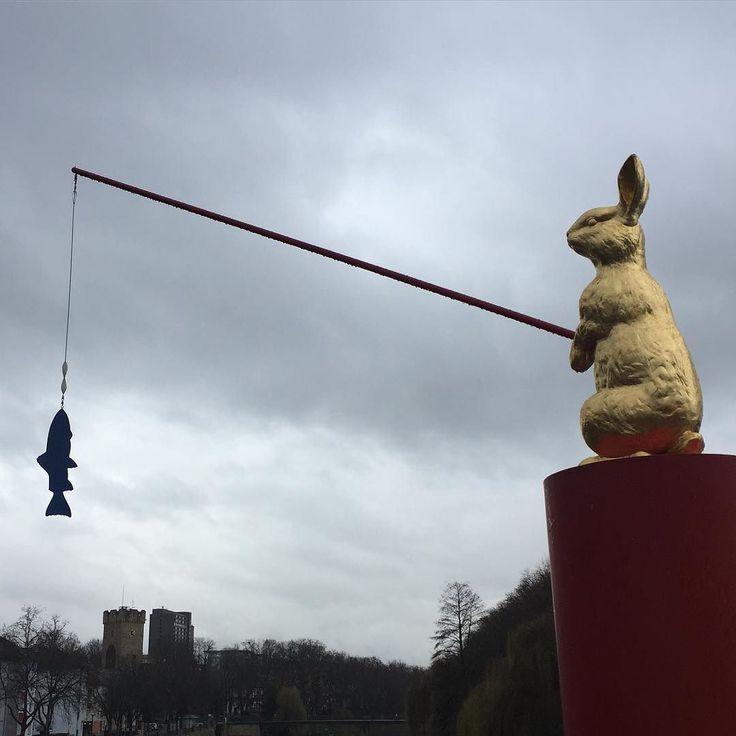 Osterhase gesichtet  leider bei weniger gutem (Lauf)Wetter! Sollte langsam mal anfangen Ostereier zu angeln   #seenonmyrun #laufenmachtglücklich #laufen #sightrunning #urbanrunning #ostern #easter #2016in2016 #blogger #runblog #runner #running #fun #happy #follow the rabbit  #like #smile #gold