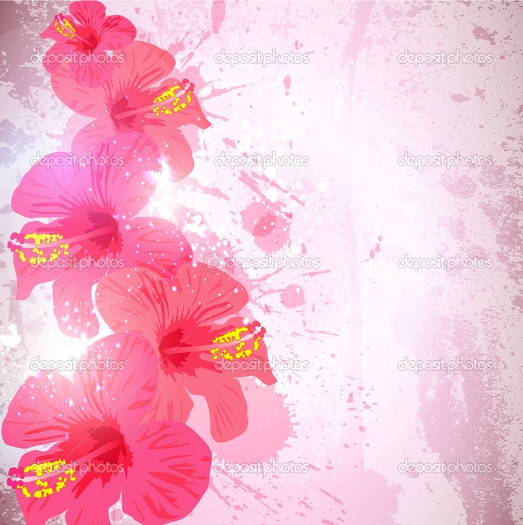 Depositphotos 7199186 Abstract Tropical Background Hibiscus Flower For Design
