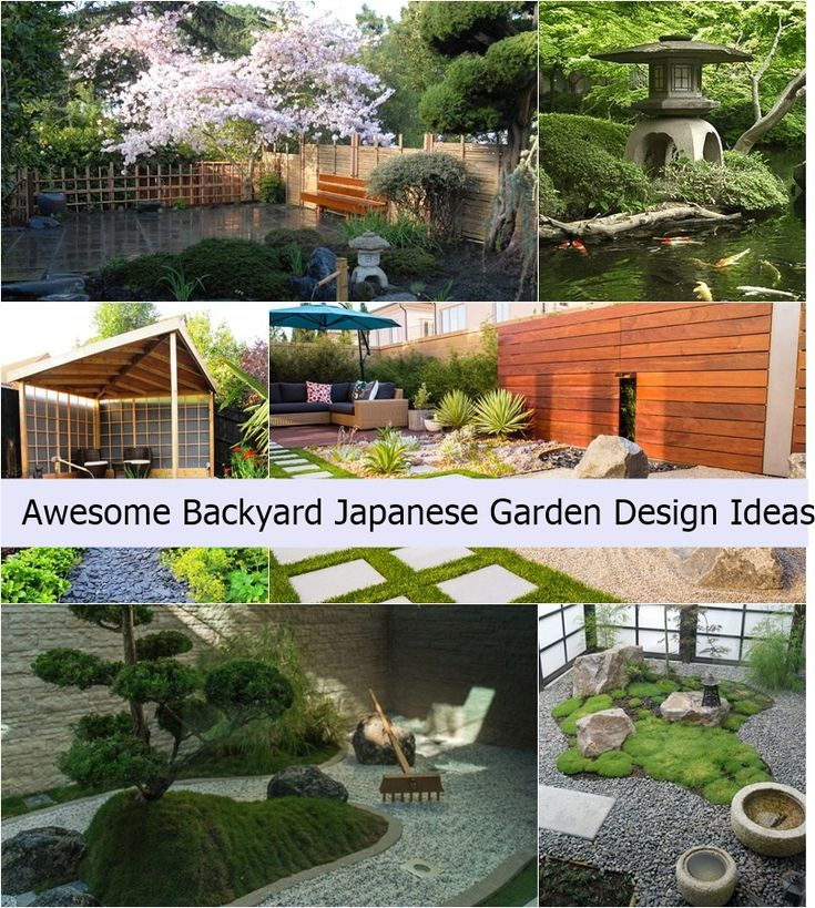 Japanese design and architecture garden is something